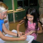MustDo.com | Kids enjoy hands-on learning about marine critters at Rookery Bay Environmental Learning Center Naples, Florida.