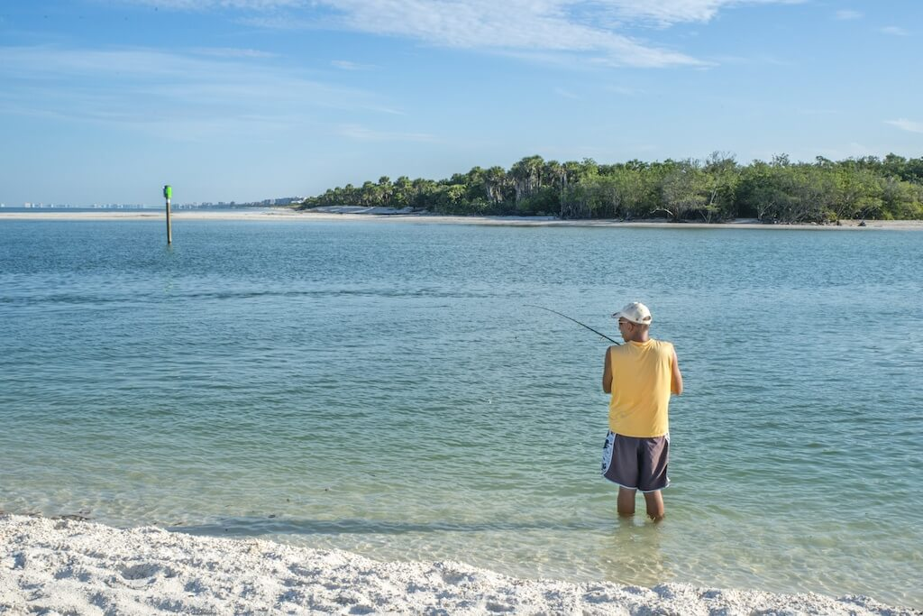 Activities at delnor wiggins pass state park all blog for Do you need a license to fish in florida