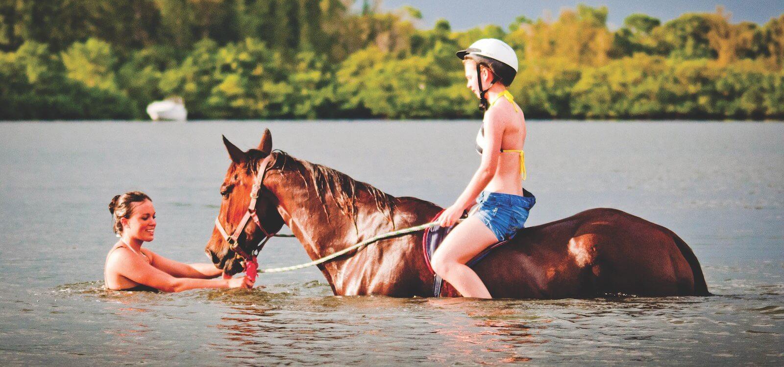MustDo.com | Swim with horses in Palma Sola Bay, Bradenton, Florida, USA. BeachHorses offers this amazing opportunity!
