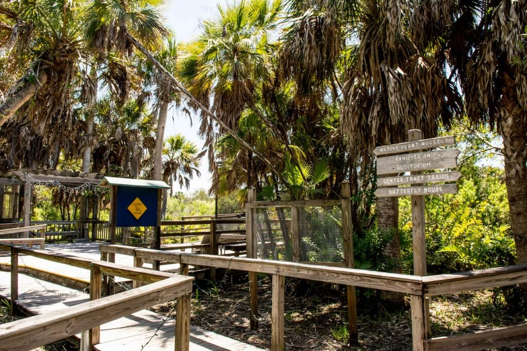 MustDo.com | Beyond the Sanibel-Captiva Conservation Foundation Nature Center, there are four miles of trails which can be explored on guided and self-guided tours.