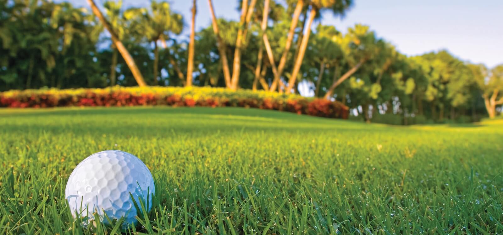 MustDo.com | Sarasota, Florida golf courses to play.