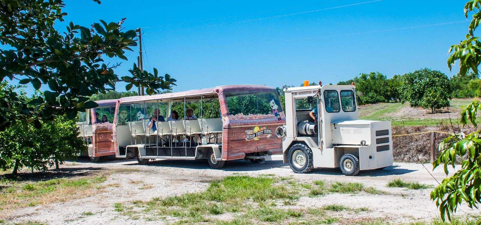 attractions activities venice florida