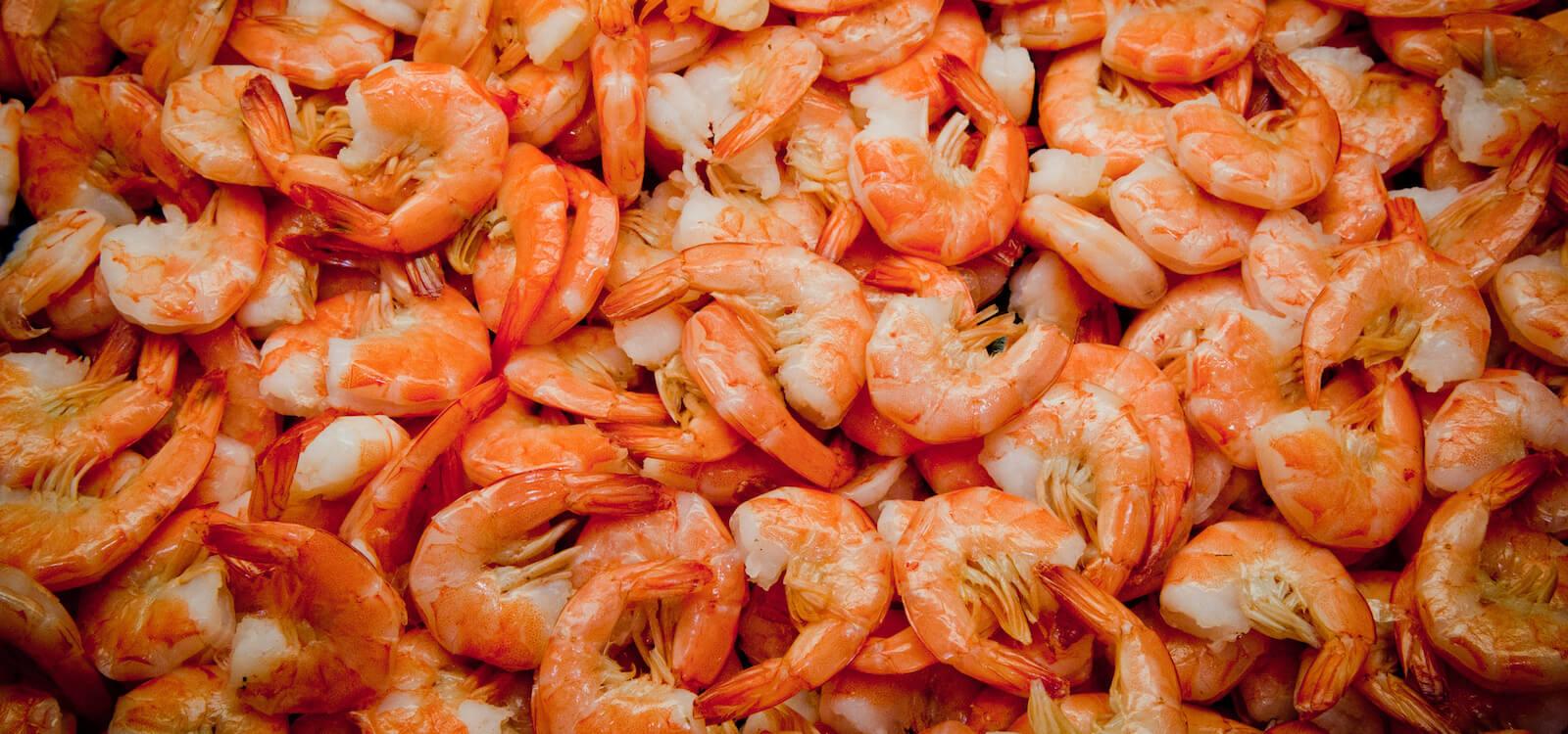 MustDo.com | Sweet pink Gulf shrimp Fort Myers, Florida. Photo by Debi Pittman Wilkey.