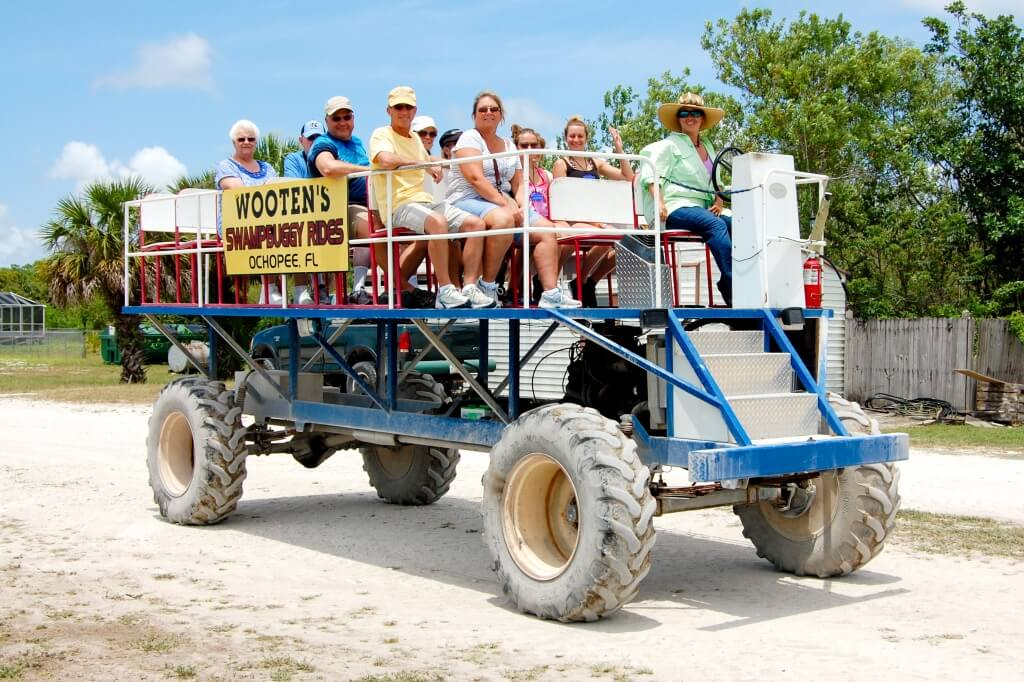 MustDo.com | Wooten's swamp buggies rides near the Florida Everglades. Your experienced swamp buggy tour guide will point out unique tropical and temperate plants, a Native American campsite and burial ground, and if you're fortunate you may encounter some native Florida wildlife including alligator, West Indian manatee, birds, deer, bear, or bald eagle.