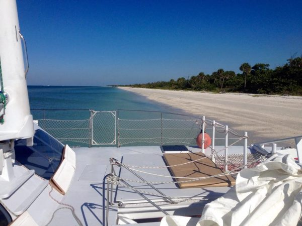 MustDo.com | Take a catamaran sailing cruise with Sweet Liberty to shell and explore remote Keewaydin Island in Naples, Florida.