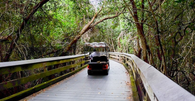 MustDo.com | Tram to Clam Pass Park a gorgeous, family-friendly beach with soft white sand, calm waters, and is one of the most popular beach access points in the Naples, Florida area. Photo by Mary Carol Fitzgerald.