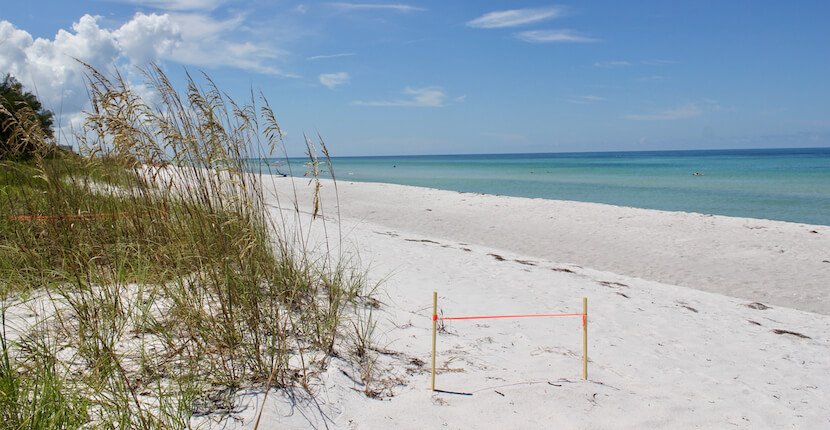 White sand beach and blue waters of the Gulf of Mexico off the coast of Southwest Florida USA. Photo by Nita Ettinger | Must Do Visitor Guides, MustDo.com