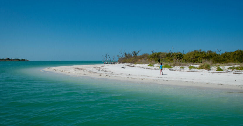 MustDo.com | One of Florida's most underdeveloped islands - Cayo Costa State Park Boca Grande, Florida. Photo by Debi Pittman Wilkey for Must Do Visitor Guides.