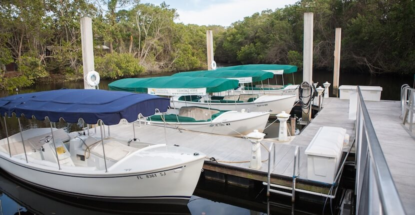MustDo.com | Conservancy of Southwest Nature Center Naples, Florida is a 21-acre nature preserve that features more than 150 species of local wildlife, eco boat tours, and a 500-gallon touch tank. Photo by Mary Carol Fitzgerald.