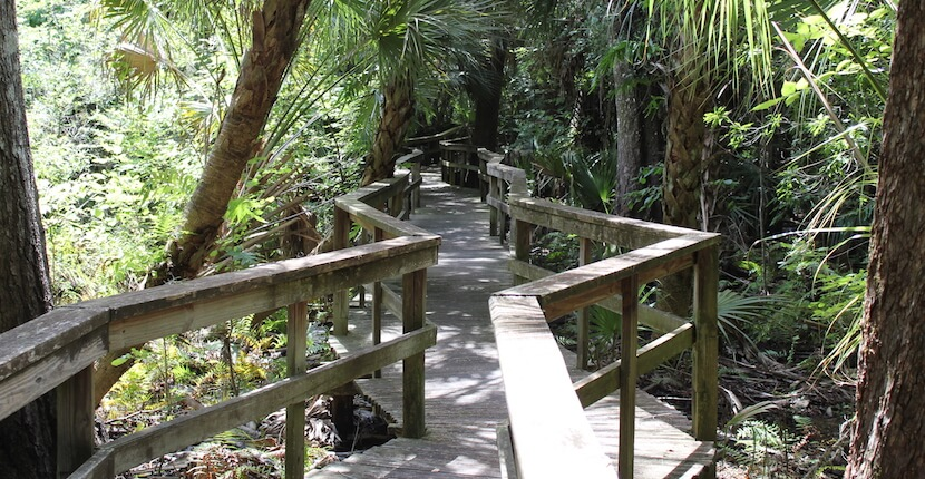 Experience Old Florida at Crowley Museum & Nature Center in Sarasota. Discover pioneer history and artifacts as you explore the museum, pioneer cabin, blacksmith shop, working sugar cane mill and more. Must Do Visitor Guides, MustDo.com.