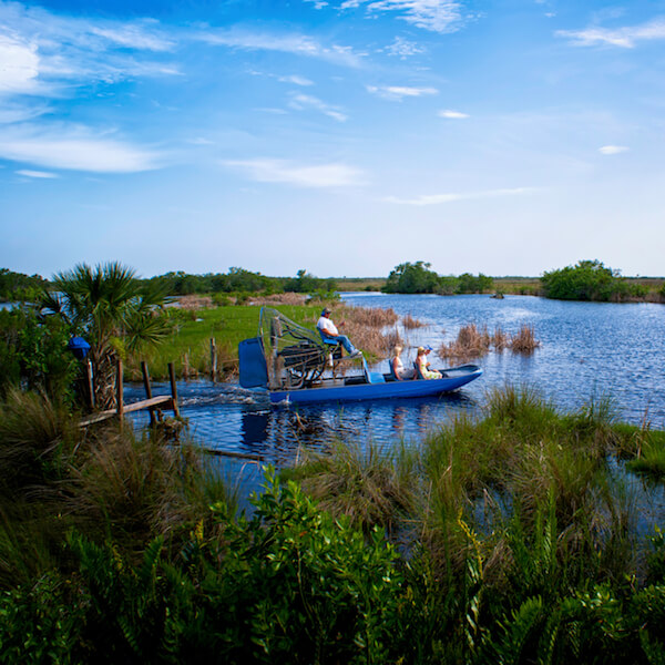 Vacations In Naples Fl: Must Do Day Trips In Naples & Best Excursions In Florida