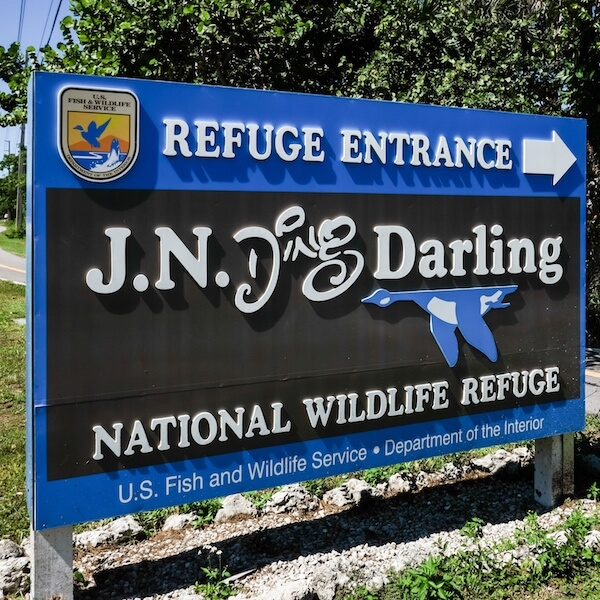 fort-myers-attractions-ding-darling-sanibel