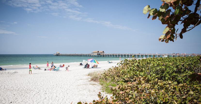 Naples municipal beach fishing pier must do visitor guides for Fish naples fl