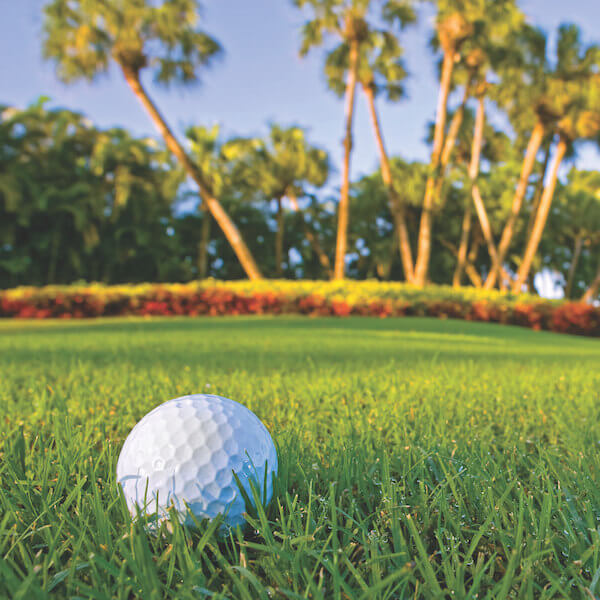 Valencia Golf and Country Club in Naples, Florida is a Gordon Lewis designed par-72, 18-hole public golf course is rated 4-stars by Golf Digest.