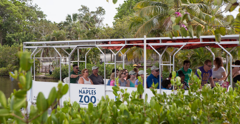 MustDo.com | Take a family fun tour boat cruise to see animals including monkeys at the Naples Zoo at Caribbean Gardens in Naples, Florida. Photo by Mary Carol Fitzgerald.