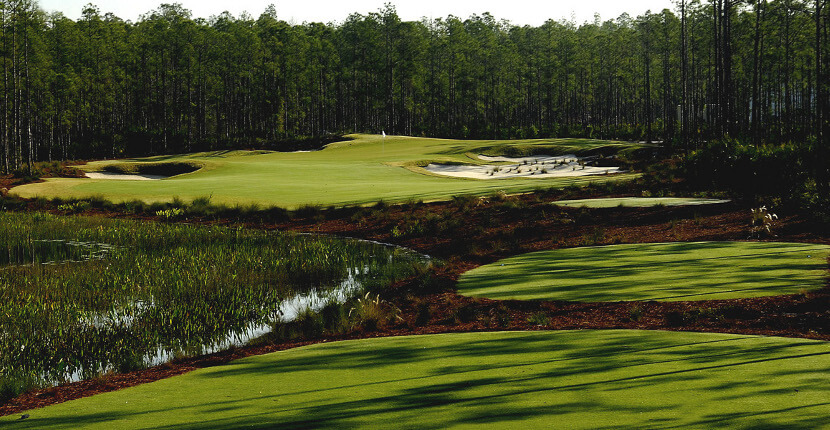 MustDo.com | Hole No. 7 at Old Corkscrew Golf Club in Estero near Ft Myers, Florida. Must Do Visitor Guides Florida vacation information.