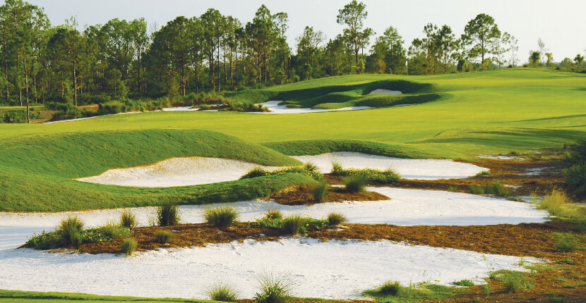 MustDo.com | Old Corkscrew Golf Club in Estero near Ft Myers, Florida. Must Do Visitor Guides Florida vacation information.
