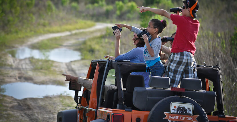 Orange Jeep Tours in Ave Maria - go off-road in a 90-minute narrated eco-adventure tour through Southwest Florida's native wetlands & uplands that is fun for the entire family. | Must Do Visitor Guides, MustDo.com