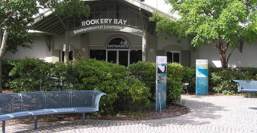 Rookery Bay Family Fun Activities Naples, Florida. Must Do Visitor Guides, MustDo.com