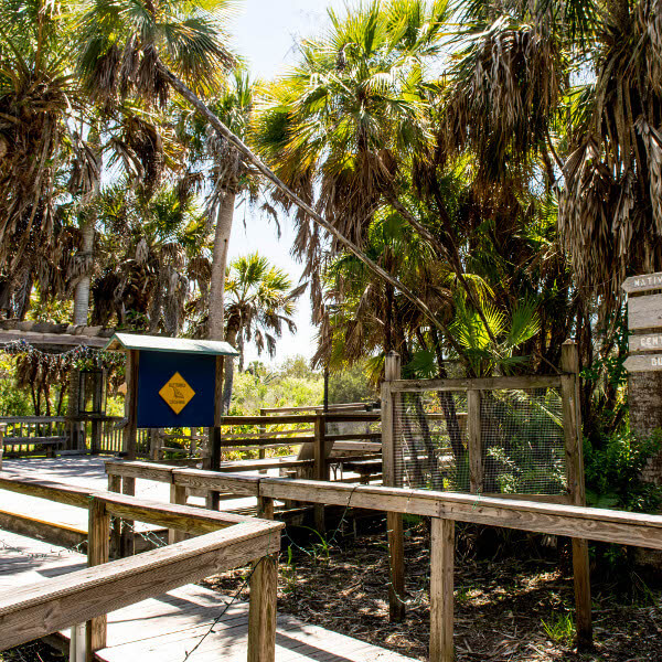 sanibel-captiva-conservation-foundation-boardwalk