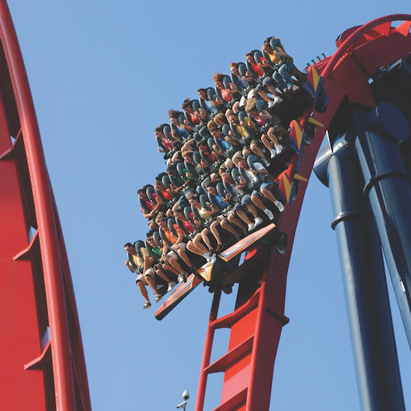 Sheikra roller coaster. Spend a fun-filled day for the entire family with a day trip to Busch Gardens Tampa Bay. Go on thrilling amusement park rides, visit a world-class zoo featuring more than 12,000 animals, see live shows, enjoy a variety of restaurants, and more! Must Do Visitor Guides, MustDo.com