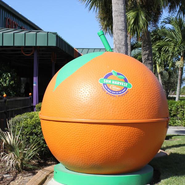 Sun Harvest Citrus Fresh Florida oranges, grapefruit Fort Myers, FL