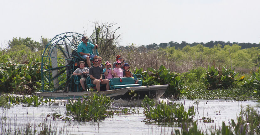 MustDo.com   Join one of the world's premier eco-tours and travel through the magnificent Florida Everglades. Explore all four ecosystems that make up the Everglades: the sawgrass prairie, mangrove estuary, cypress swamps and pine savannah. Everlades Day Safari Fort Myers, Florida.