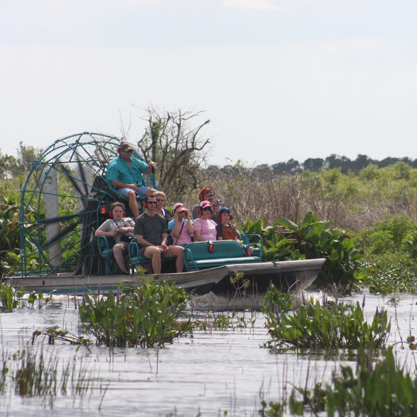 Airboat ride Everglades Day Safari Naples, Florida.