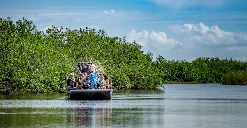 MustDo.com | Wooten's Everglades Airboat Tours - Watch for alligators and other wildlife on a thrilling Everglades airboat tour or swamp buggy ride that is safe and fun for all ages. Photo by Jennifer Brinkman.