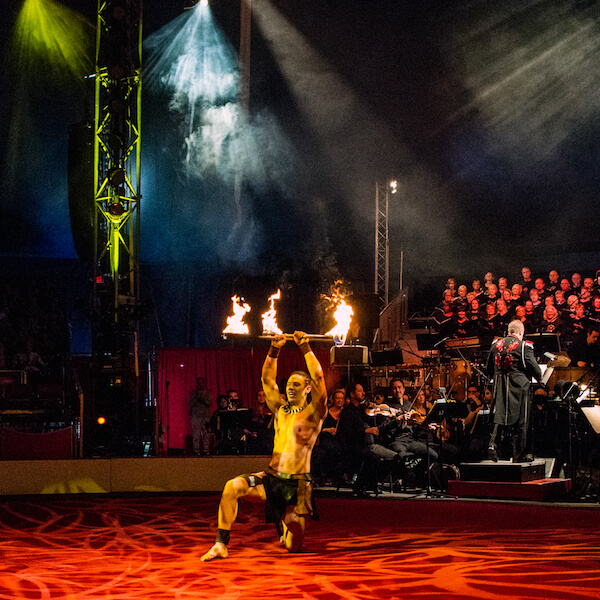 Circus Arts Conservatory Sarasota, Florida. Acclaimed around the globe, Circus Sarasota offers year-round professional performances, showcased in a one-ring, five-star, European-style big top, and unique area facility. MustDo.com