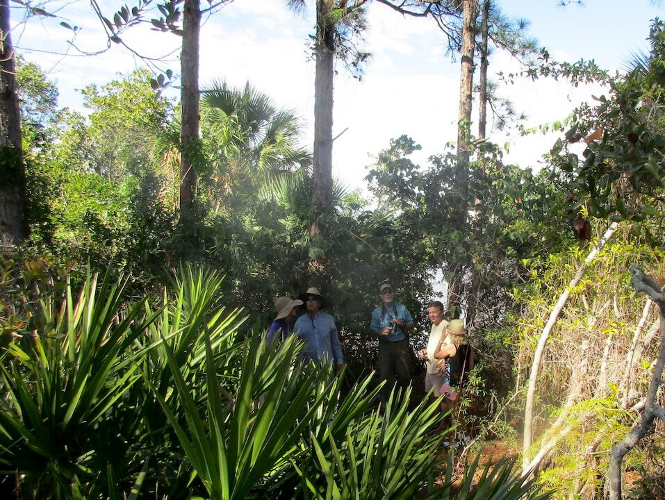 Rookery Bay Reserve tours Naples, Florida. Must Do Visitor Guides, MustDo.com.