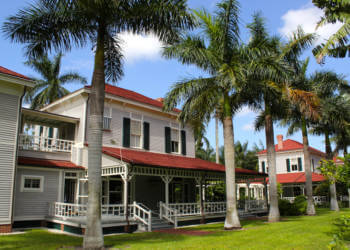 Palms line the gardens and homes at Edison and Ford Winter Estates Fort Myers, Florida USA. Must Do Visitor Guides, MustDo.com
