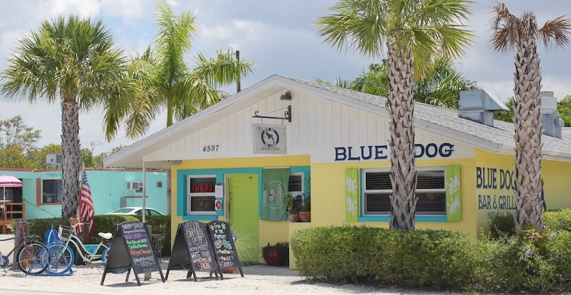 Blue Dog Bar & Grill. If you want to experience a colorful slice of small town Florida, be sure to add a day trip to Matlacha on your Naples, vacation itinerary. | Must Do Visitor Guides, MustDo.com