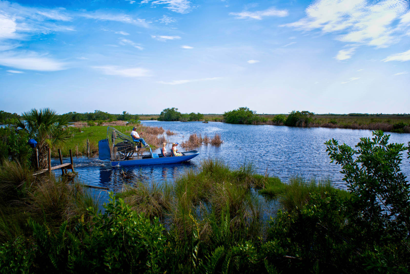Take a trilling airboat ride in the Florida Everglades to see alligators, birds, and other Florida wildlife. Photo by Jennifer Brinkman | MustDo.com