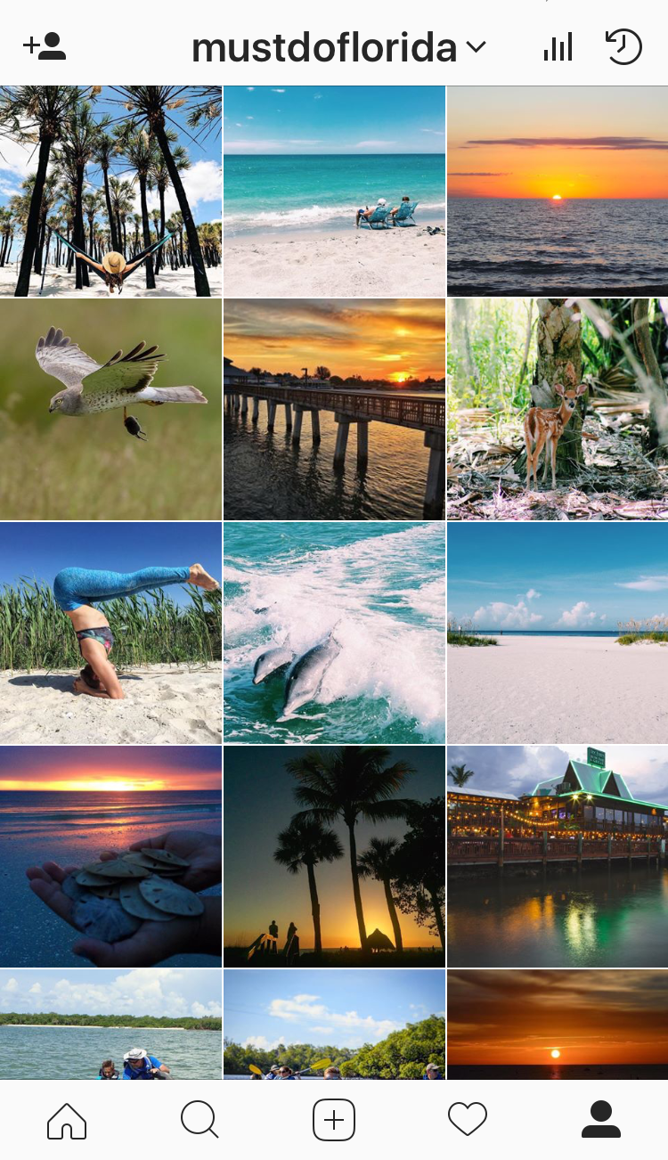 Follow @mustdoflorida on Instagram for photos of the Sarasota, Naples, and Fort Myers area! | Must Do Visitor Guides, MustDo.com