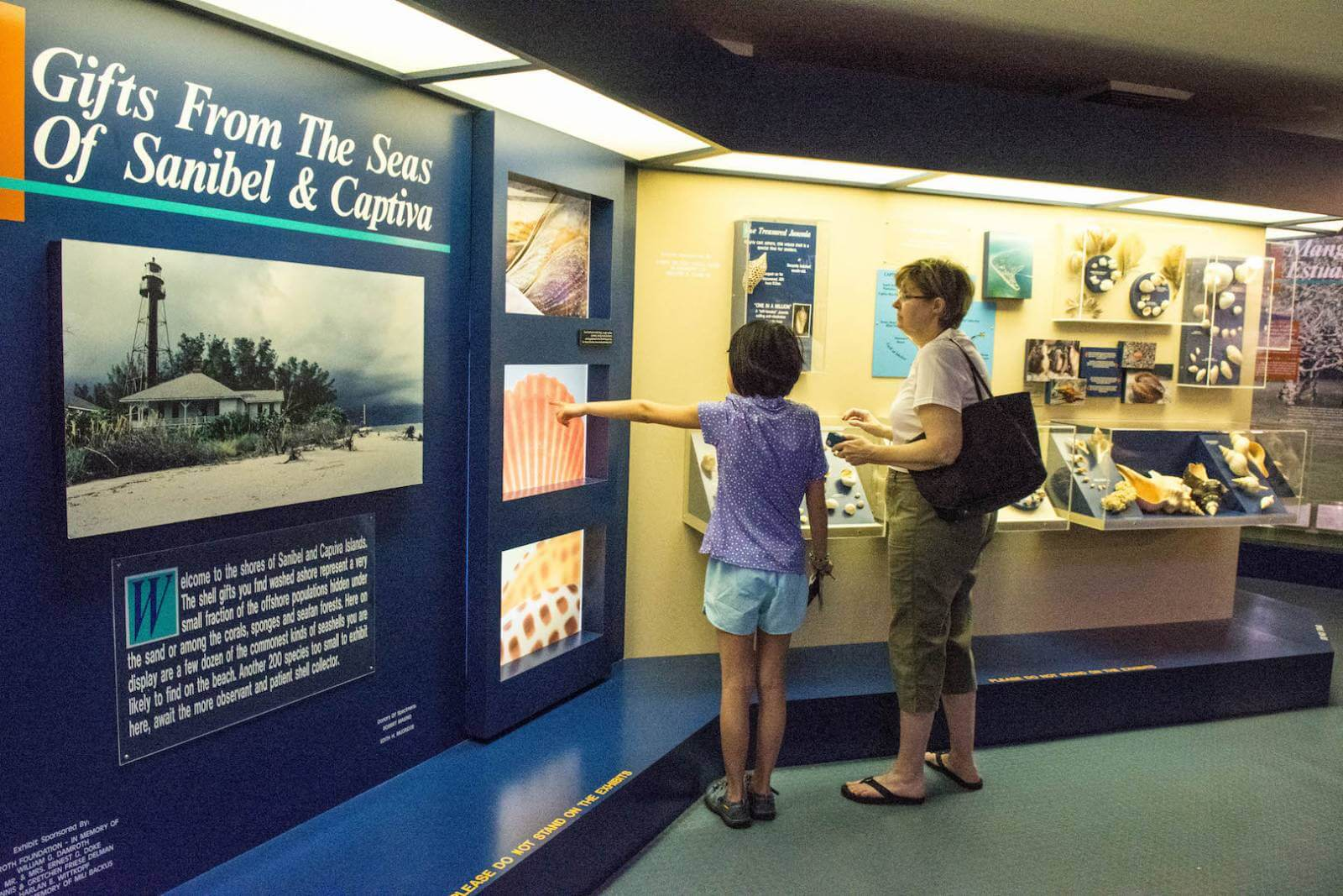 The Bailey Matthews National Shell Museum on Sanibel is the only dedicated shell museum in the USA! Photo by Debi Pittman Wilkey. #Florida #Sanibel #museum #shells #thingstodo #attractions #FortMyersFlorida