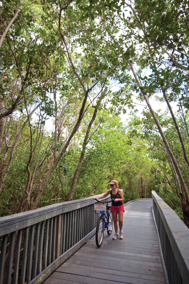 The best way to get around Sanibel and Captiva, Florida is by bicycle. The islands have 22 miles of shady traffic-free bike trails – and no stop lights! Photo by Debi Pittman Wilkey. #Florida #vacationideas #biketrails #Sanibel #activities #familyfun