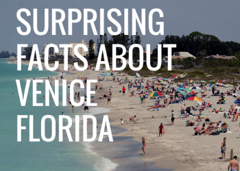 20 Surprising Facts About Venice Florida Check your local knowledge of Venice, Florida. #VeniceFlorida