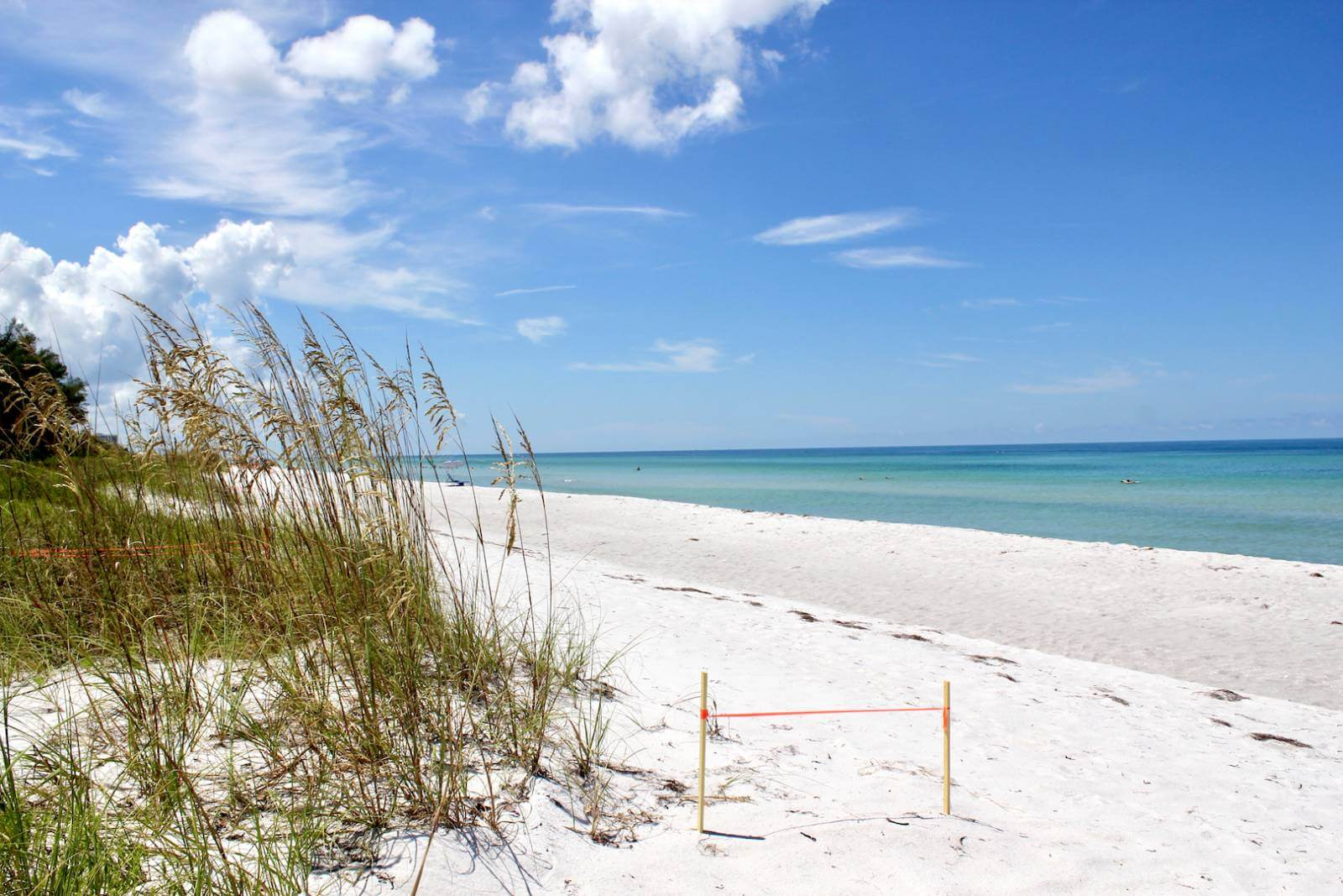 Longboat Key is Sarasota's longest and most northerly barrier island with 12 miles of sandy coastline. It is a popular island for nesting turtles to come ashore and lay their eggs. #Sarasota #Florida #vacation #beach #LongboatKey