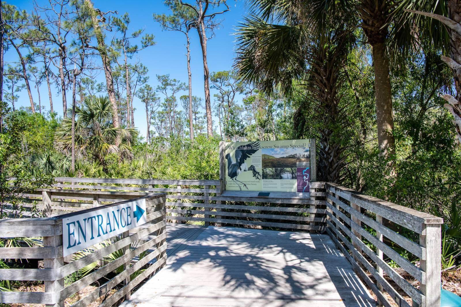 Boardwalk trail entrance Corkscrew Swamp Sanctuary Naples, Florida. Photo by Jennifer Brinkman | Must Do Visitor Guides, MustDo.com