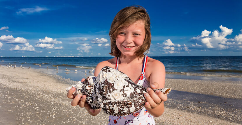 Girl holding large shell found on a Sanibel beach near Sundial Beach Resort