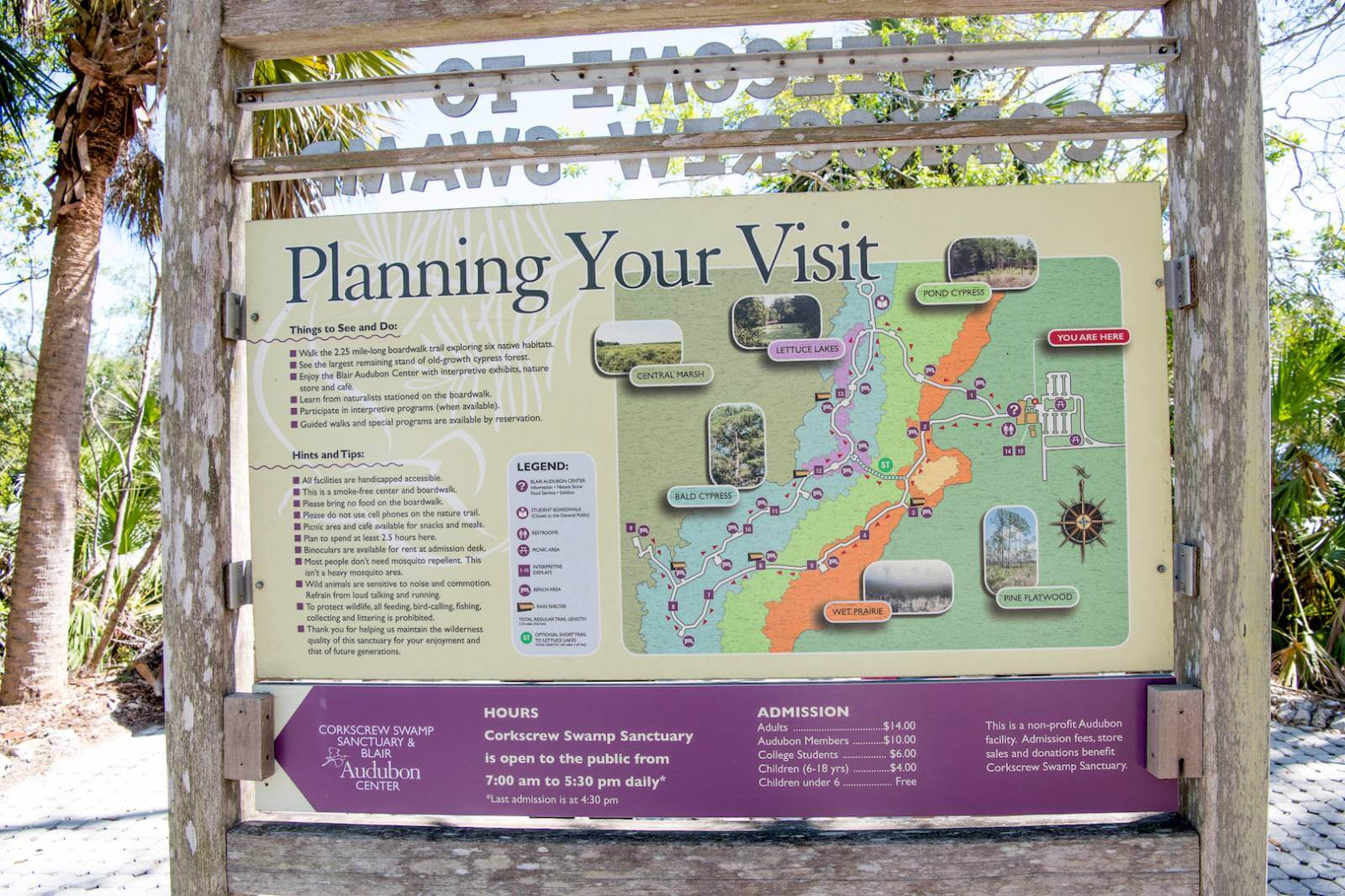 Planning your visit to the Audubon Corkscrew Swamp Sanctuary in Naples, Florida. Photo by Jennifer Brinkman | Must Do Visitor Guides, MustDo.com