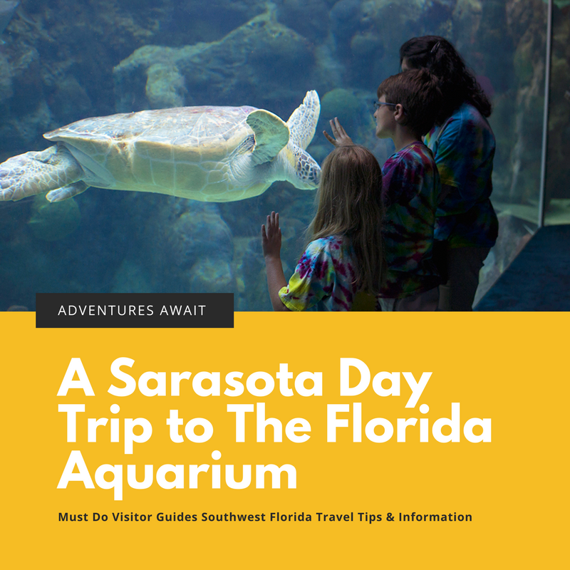 Here is a guide to help you get the most out of your visit to The Florida Aquarium in Tampa.