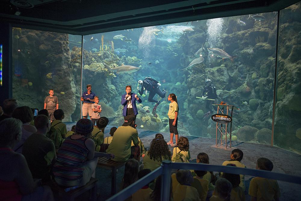 The Florida Aquarium Secret Sea Life Superhero show. Photo credit The Florida Aquarium.