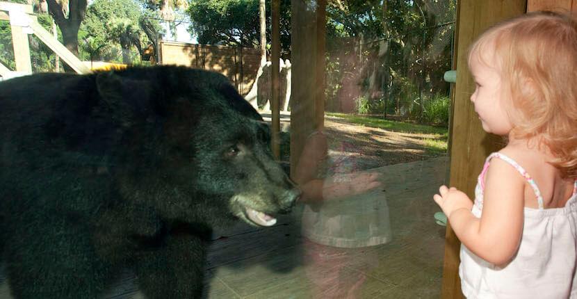 Naples zoo florida discount coupons