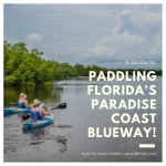 A guide to paddling Florida's Paradise Coast Blueway. Photo by Jennifer Brinkman. Must Do Visitor Guides, MustDo.com.
