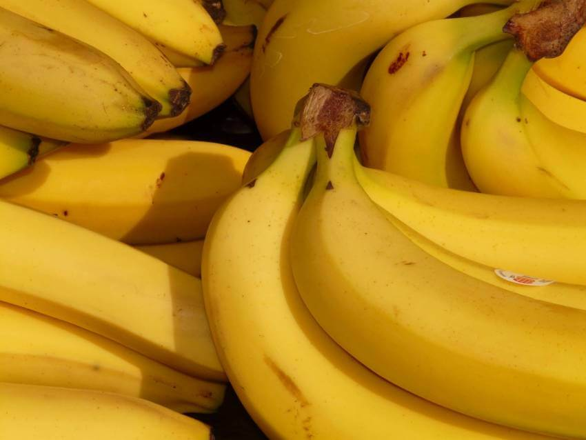 Bananas are a healthy road trip snack. Skip the fast food, here is a list of delicious, filling, nutritious foods that are easy to pack in your car for a road trip to Florida. Must Do Visitor Guides | MustDo.com