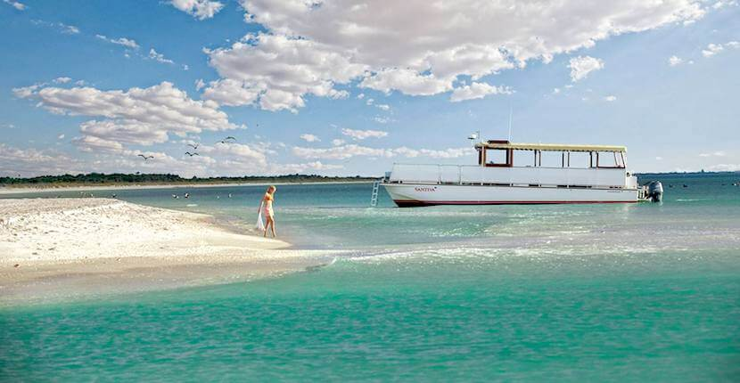 Captiva Cruises sightseeing, sunset sailing, and wildlife tour boat cruises around Boca Grande, Cayo Costa, Sanibel and Captiva Island, Florida. Must Do Visitor Guides | MustDo.com