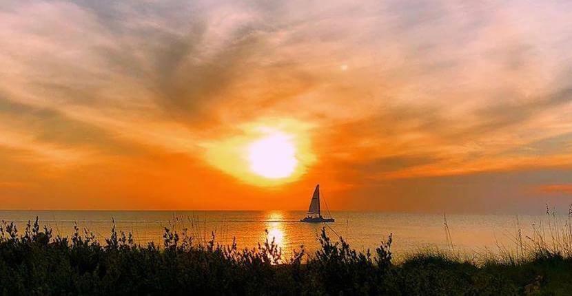 Captiva Cruises sightseeing, sunset sailing, and wildlife tour boat cruises around Sanibel and Captiva Island, Florida. Must Do Visitor Guides | MustDo.com