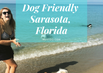 Tips for traveling with your dog including parks, restaurants, shops, and hotels that allow dogs in Sarasota, Florida. Must Do Visitor Guides | MustDo.com